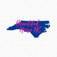 Beautiful Noise NC Logo