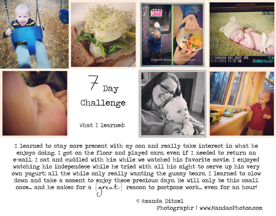 7 Day Challenge Blog, Raleigh Mom Owned Business