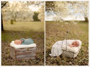 Erica-Courtine-Raleigh-Photographer-1