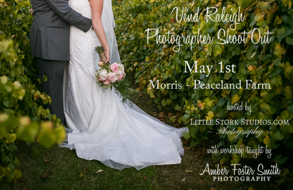 Styled Shoot Photographers Raleigh